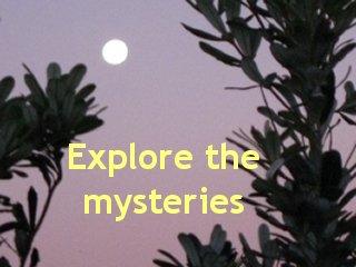 Moon_trees2