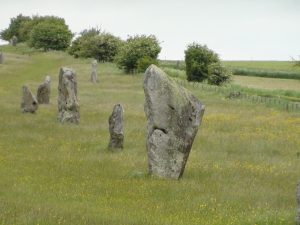 Appropriately named 'The shark', this stone forms part of the West Kennet Avenue leading up to the Avebury circles.